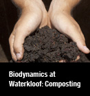 Biodynamics at Waterkloof: Composting